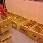 pommes distribution